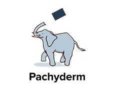 独自機能でほかと一線を画す、データインフラ企業Pachyderm